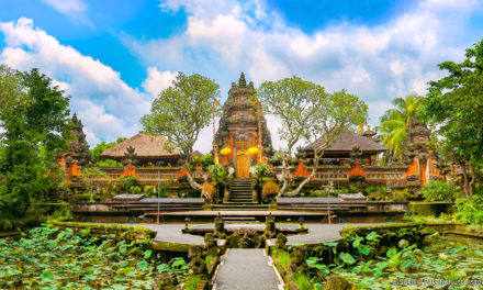 Bali Best Day Tours