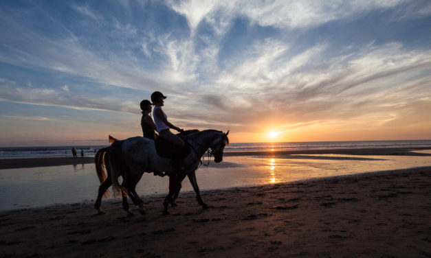 SUN BAKE OR HORSE RIDE ON SEMINYAK BEACH