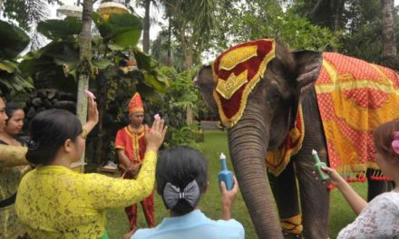 "TUMPEK KANDANG ""ANIMALS HOLY DAY"""